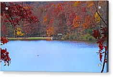 The Watershed Acrylic Print by Lynn Bauer