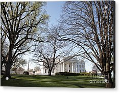 The White House And Lawns Acrylic Print by Neil Overy