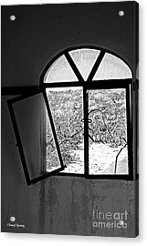 The Window Acrylic Print by Cheryl Young