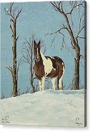 There Is A Season Acrylic Print by Mary Ann King