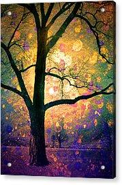 These Dreams Acrylic Print by Tara Turner