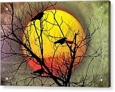Three Blackbirds Acrylic Print by Bill Cannon