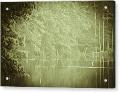 Through The Trees Acrylic Print by Kim Henderson