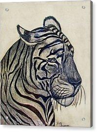 Tiger I Acrylic Print by Debbie Portwood