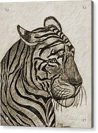 Tiger Iv Acrylic Print by Debbie Portwood
