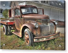 Tough Old Workhorse Acrylic Print by J Laughlin