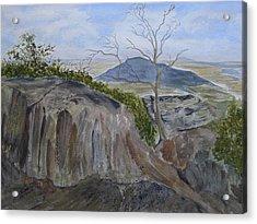 Trails End - Rocks Trees And Sky Acrylic Print by Joel Deutsch