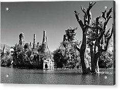 Tree In Lake Acrylic Print by Glenn Sundeen - TigerPal