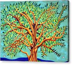 Tree Of Life Acrylic Print by Fraida Gutovich