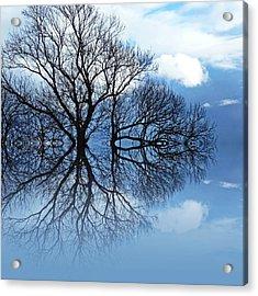 Tree Of Life Acrylic Print by Sharon Lisa Clarke
