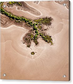 Trees And Mudflats Acrylic Print by Judi Mowlem
