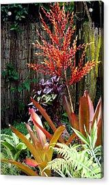 Tropical Garden Acrylic Print by Karon Melillo DeVega
