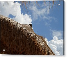 Tropical Straw Umbrella Acrylic Print by Kimberly Perry