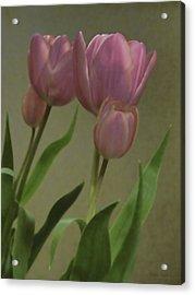 Tulips Reflections Acrylic Print by Debra     Vatalaro