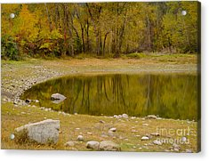 Tunnel Pond Acrylic Print by Idaho Scenic Images Linda Lantzy