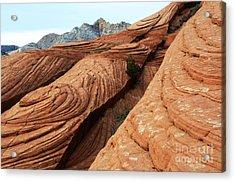 Twisted Landscape Acrylic Print by Bob Christopher