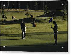 Two People Play Golf While Elk Graze Acrylic Print by Raymond Gehman