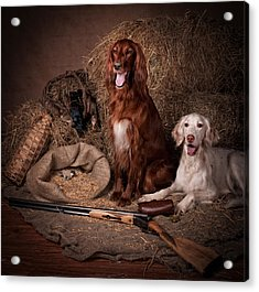 Two Setters With The Gun... Acrylic Print by Tanya Kozlovsky