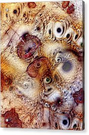 Unphased And Confused Acrylic Print by Casey Kotas