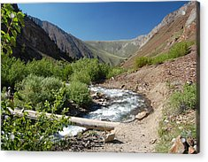 Upper Mcgee Creek Acrylic Print by Kirk Williams
