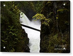 Upper Qualicum Falls Acrylic Print by Bob Christopher