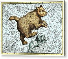 Ursa Major Constellation, Bode Star Atlas Acrylic Print by Detlev Van Ravenswaay