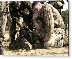 U.s. Marine Helps A Member Acrylic Print by Stocktrek Images