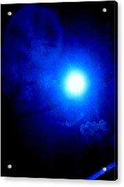 Vampire Moon Acrylic Print by Allen n Lehman