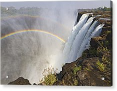 Victoria Falls, Zambia, Africa Acrylic Print by Yvette Cardozo