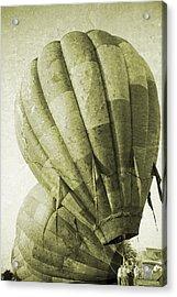 Vintage Ballooning II Acrylic Print by Betsy Knapp