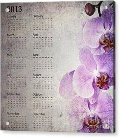 Vintage Orchid Calendar 2013 Acrylic Print by Jane Rix