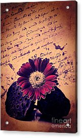 Vintage Passion Letters Acrylic Print by Angela Doelling AD DESIGN Photo and PhotoArt
