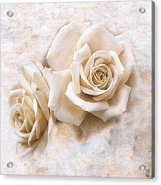Vintage Rose Iv Square Acrylic Print by Jai Johnson