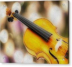 Violin Acrylic Print by Cheryl Young