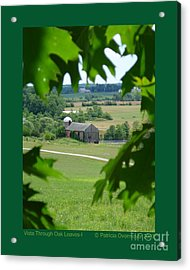 Vista Through Oak Leaves-i Acrylic Print by Patricia Overmoyer