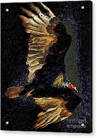 Vulture In Van Gogh.s Dream Returns . 40d8879 Acrylic Print by Wingsdomain Art and Photography