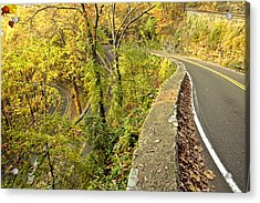 W Road In Autumn Acrylic Print by Tom and Pat Cory
