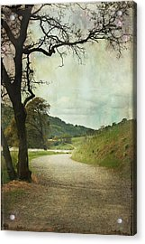 Walk Of Life Acrylic Print by Laurie Search