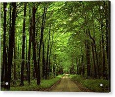 Walking Away Forest Path  Acrylic Print by ilendra Vyas