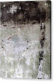 Wall Texture Number 11 Acrylic Print by Carol Leigh