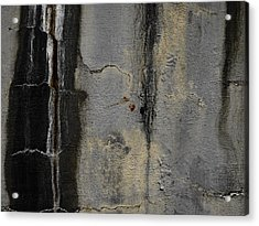 Wall Texture Number 5 Acrylic Print by Carol Leigh