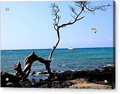 Water Sports In Hawaii Acrylic Print by Karen Nicholson