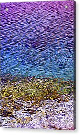Water Surface  Acrylic Print by Elena Elisseeva