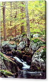 Waterfall II Acrylic Print by HD Connelly