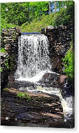 Waterfall Acrylic Print by Sara Walsh