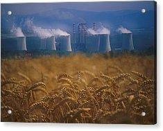Wheat Fields And Coal Burning Power Acrylic Print by David Nunuk