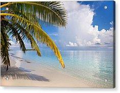 Whispering Palm On The Tropical Beach Acrylic Print by Jenny Rainbow