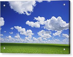 White Clouds In The Sky And Green Meadow Acrylic Print by Don Hammond