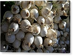 White Onions Acrylic Print by Susan Herber