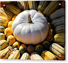 White Pumpkin Acrylic Print by Jai Johnson